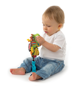 Playgro 0182853 baby hanging toy | Dodax.com