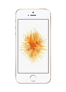 Apple iPhone SE 128GB Gold | Dodax.at
