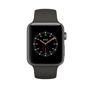 Apple Watch Edition OLED GPS Display diagonal Grau Smartwatch | Dodax.ch
