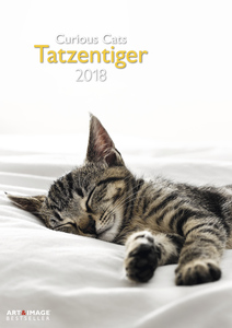 Tatzentiger 2018 | Dodax.at