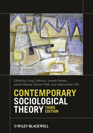 Contemporary Sociological Theory | Dodax.at