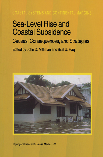 Sea-Level Rise and Coastal Subsidence: Causes, Consequences, and Strategies | Dodax.ch