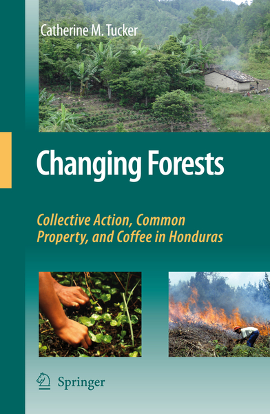 Changing Forests | Dodax.pl