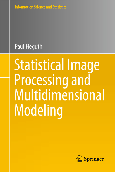 Statistical Image Processing and Multidimensional Modeling | Dodax.ch
