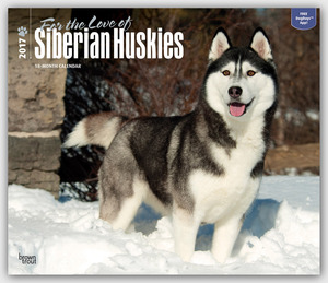 For the Love of Siberian Huskies 2017 | Dodax.at