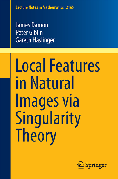 Local Features in Natural Images via Singularity Theory   Dodax.ch