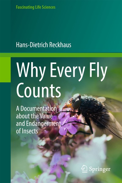 Why Every Fly Counts | Dodax.pl