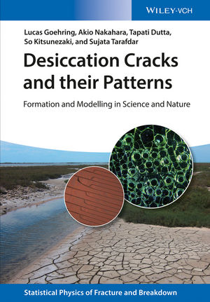 Desiccation Cracks and their Patterns | Dodax.ch