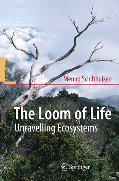 The Loom of Life | Dodax.ch