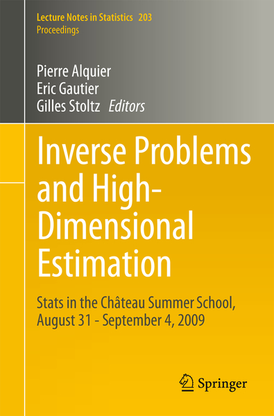 Inverse Problems and High-Dimensional Estimation | Dodax.at