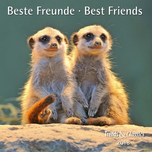 Beste Freunde  / Best Friends 2018 | Dodax.at