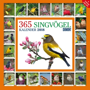 365 Singvögel 2018 | Dodax.at