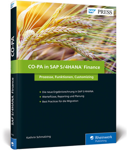 CO-PA in SAP S/4HANA Finance | Dodax.at