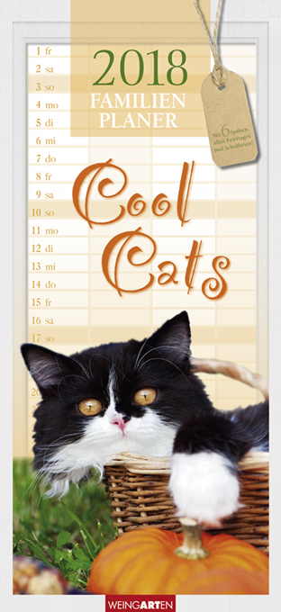 Familienplaner Cool Cats 2018   Dodax.at