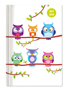 Collegetimer Pocket Owls 2017/2018 - Schülerkalender A6 - Weekly | Dodax.at