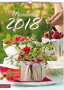 Momente 2018 | Dodax.at