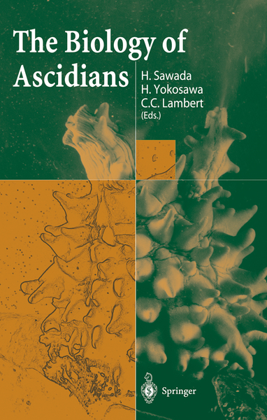 The Biology of Ascidians | Dodax.at