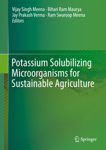 Potassium Solubilizing Microorganisms for Sustainable Agriculture | Dodax.ch