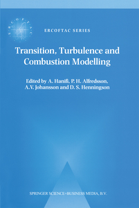 Transition, Turbulence and Combustion Modelling | Dodax.ch