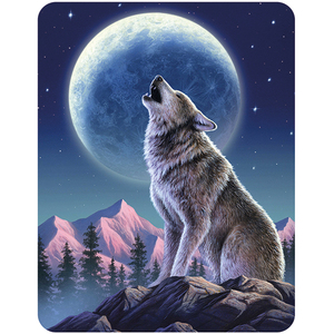 3D Magnet Moonlight Sonata | Dodax.at