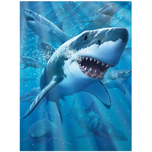 3D Bild Great White Delight | Dodax.ch
