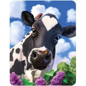 3D Magnet Curious Cow | Dodax.at