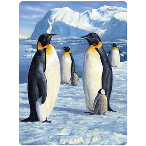 Image of 3D Postkarte Antarctic Mayesty