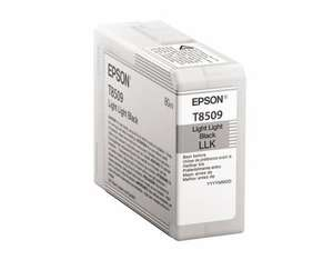 Tinte Epson C13T850900 2xlight black, 80ml | Dodax.ch